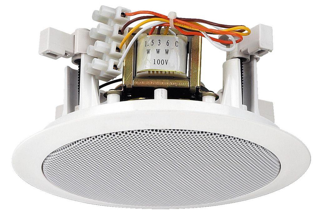 100 v speaker